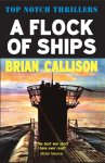 A Flock of Ships by Brian Callison